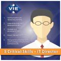 VIE IT Director Skills